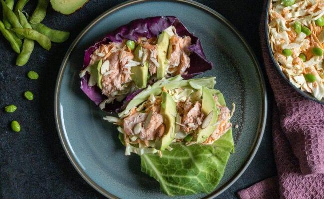 ketoliv-grøntsagswraps-med-laks-coleslaw-edamamebønner-overview